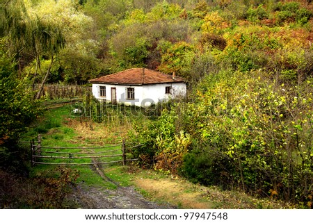 an image of small cottage in forest #97947548