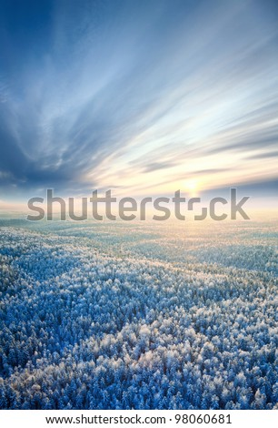 Aerial view of winter forest during sunset. Royalty-Free Stock Photo #98060681