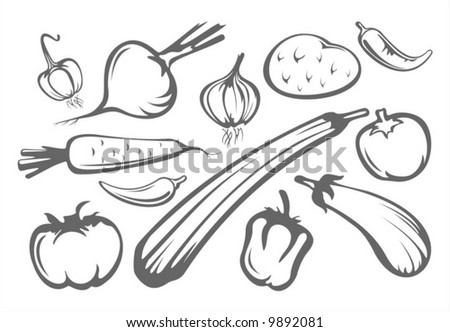 The stylized tomatoes, pepper, eggplant, onion, garlic, potatoes and zucchini isolated on a white background.