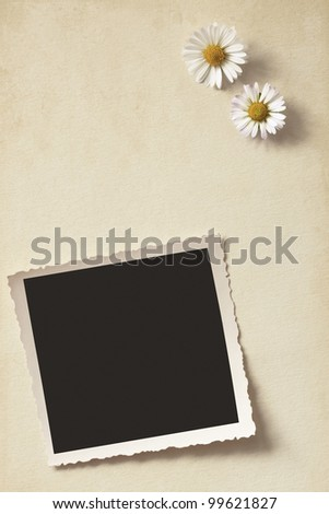 Daisies and old photo on vintage background