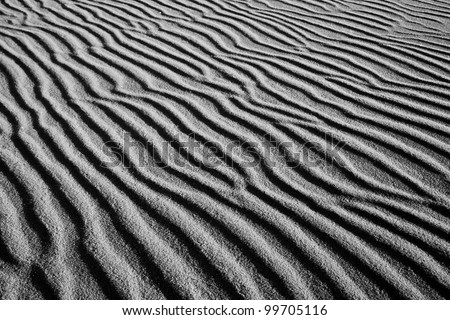 Dunes in slowinski national park #99705116