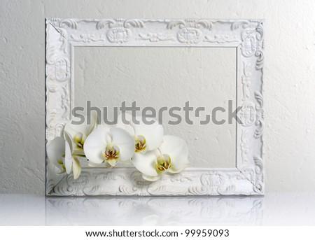 beautiful white frame