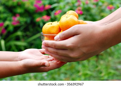 Image of an adult hand offering a bowl of mandarin oranges to a child hand with beautiful green and red bokeh as background.
