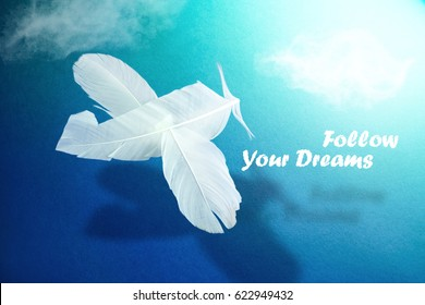 "Image of airplane hovering in clouds from feathers of white bird with a shadow and inscription ""Follow your dream"" on blue background. Concept of dream of inspiration and aspiration ."