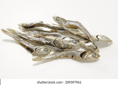 An Image of Anchovies