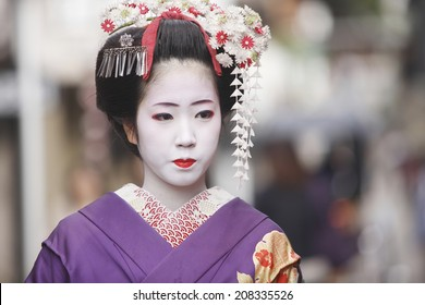 An Image of Apprentice Geisha