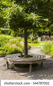 Image of an around the tree bench in a garden.