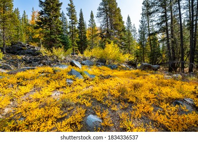 Image of an Autumn scenery in the mountains