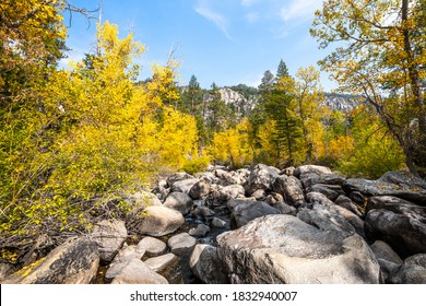 Image of an Autumn scenery from the West Fork Carson River