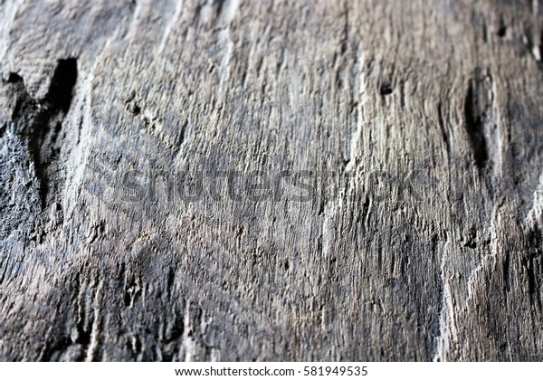 An image of a background - wood