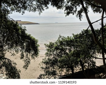 Image of the beach framed by tree branches - Barry Island, Wales, UK