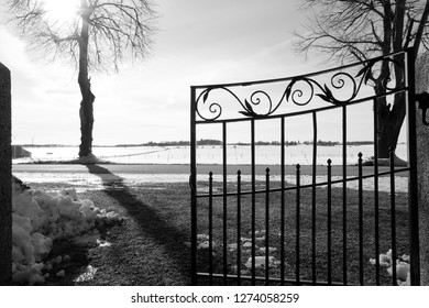 Image in black and white of hinged iron gate with ornament towards snowy field with bright sunny light shining through branches.
