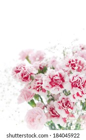 An image of Bouquet of carnation