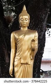 image of Buddha in lam-pang