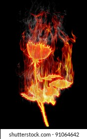 Image of burning roses on a black background