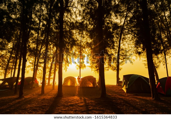 The image of  camping tents and activity on the beach in the morning with golden sky and sunrise. Hat wanakorn, a beach filled with pine trees in Thailand.