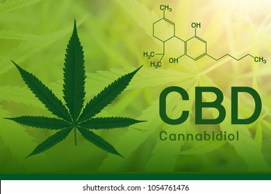 Image cannabis of the formula CBD