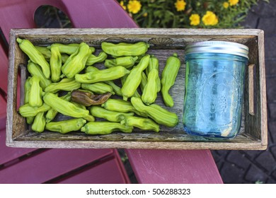 Image of Canning Pepperoncini Ingredients