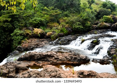 The image was captured at Satara district in Maharashtra state, India. It shows a stream of water in the jungle.