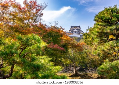 Image of  castle tower of Hikone-jo Castle  in Shiga, Japan.  Shot from the Genkyu-en Park .