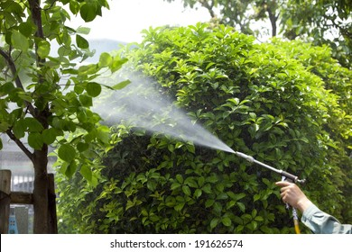 An image of Chemical spraying