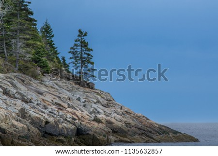 An image of coastal Maine at the edge of the ocean with trees and rocky shore line