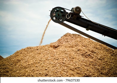 Image of a conveyor belt transporting wood waste