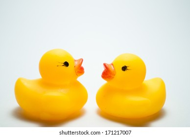 image of duck and ducklings on an isolated background