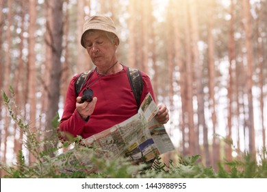 Image of eldery man hiking and looking at compass and map for direction for trip in forest, senior male wearing casual outfit with backpack being lost in wood. Traveling and active recreation concept.