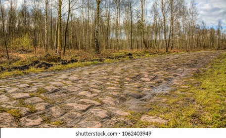 Image of the famous cobblestone road from the forest of Arenberg (Pave d'Arenberg). Every year it is part of the route of Paris Roubaix one of the most famous one day road cycling race. HDR image.