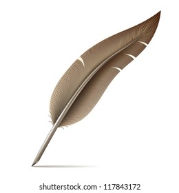 Image of feather pen on white background.