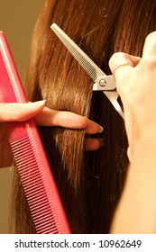an image of a Female hair cutting at a salon