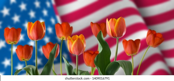 image festive flowers on American flag background