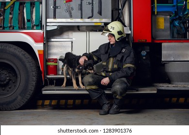 Image of fireman in helmet with dog