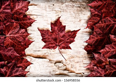 The image of the flag of Canada constructed entirely out of genuine maple leaves and white birch bark from species native to that country.