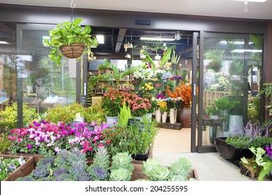 An Image of A Flower Shop