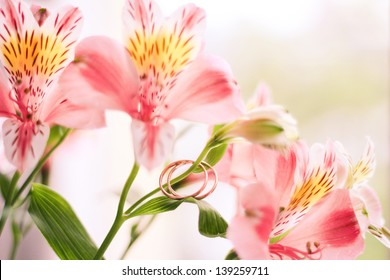 Image of flowers and wedding rings on a gentle background of a bright background. wedding flowers, wedding rings