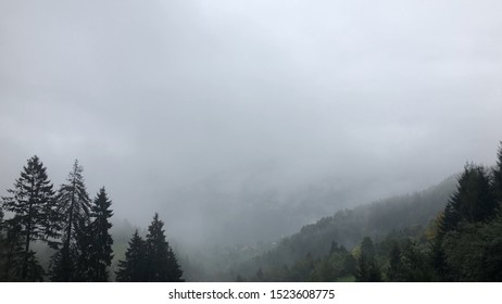 Image of a forest and foggy hills