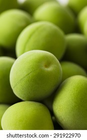 An image of Fruit of plum