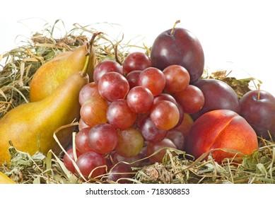 image of fruits closeup