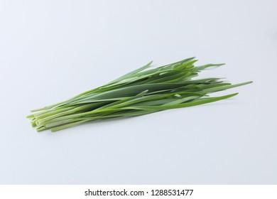 Image of garlic chive