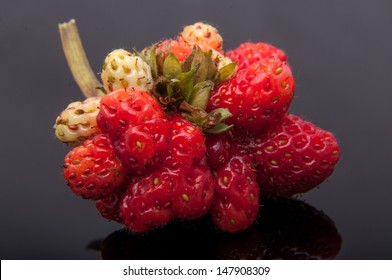 An image of genetic modified strawberry