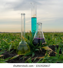 Image of a glass flask with a chemical solution on the background of young shoots of agricultural plants.