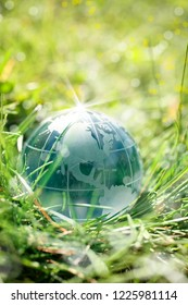 an image of glass globe on green grass