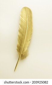 An Image of Gold Feathers