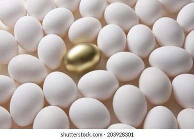 An Image of Golden Egg