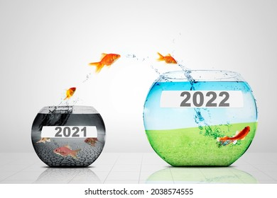 Image of golden fish jumping from polluted aquarium to green aquarium with numbers 2022 in the studio. Isolated on white background
