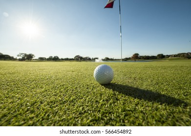 Image of a Golf ball on green shot from a low angle and close to flag