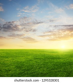 Image of green grass field and evening cloudy sky with copyspace
