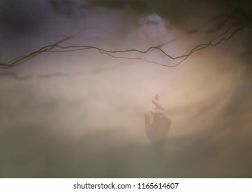 Image of a hand reaching up to the sky.Conceptual scene.